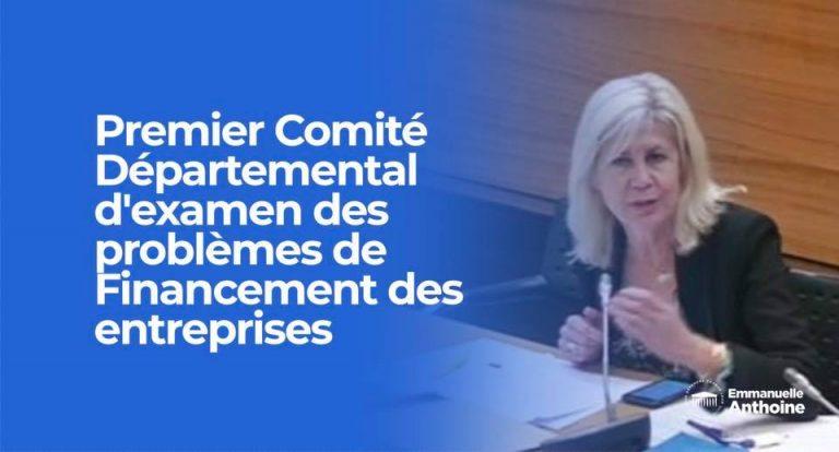Réunion plénière en préfecture du Comité départemental d'examen des problèmes de financement des entreprises