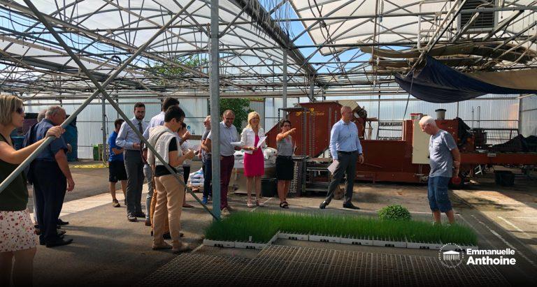 Visité de l'exploitation Serres-Guichard à Chavannes